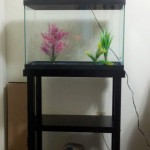 10 Gallon Fish Aquarium Stand