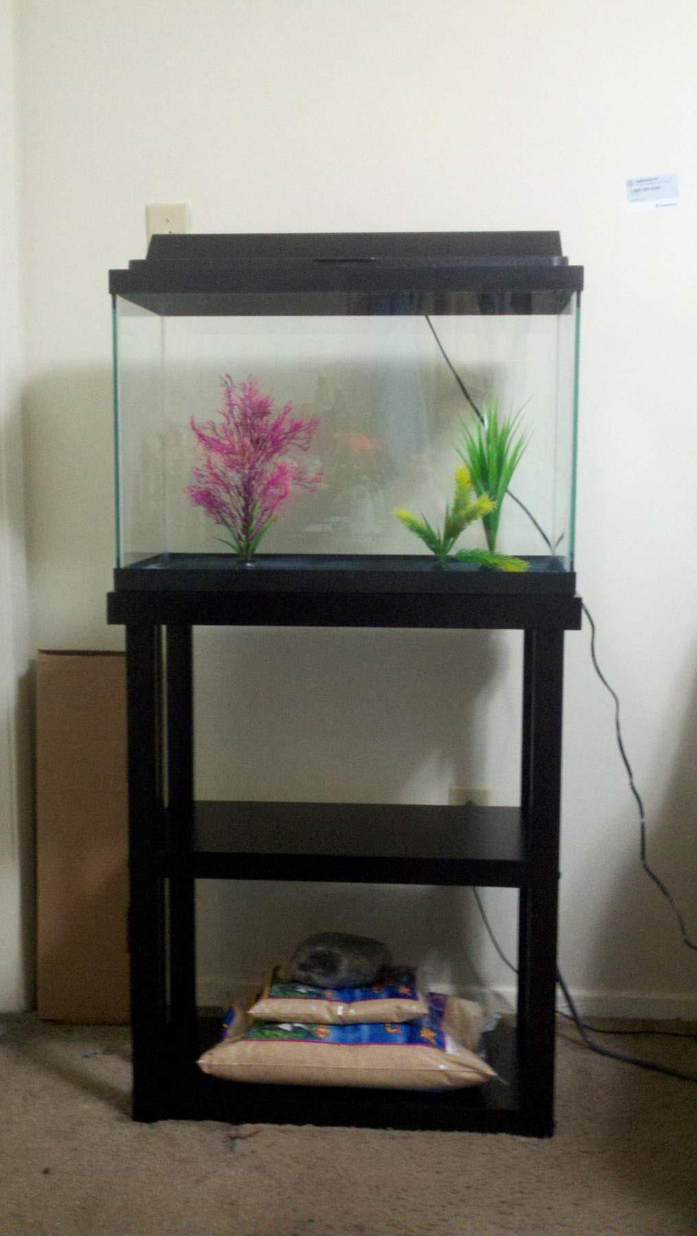 Fish tank tv stand -  10 Gallon Fish Aquarium Stand