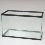10 Gallon Glass Aquarium