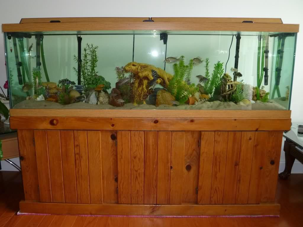 100 Gallon Aquarium Glass Thickness
