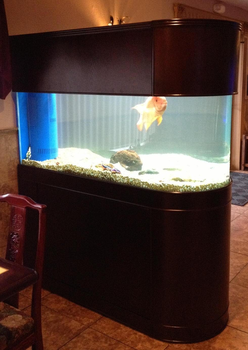100 Gallon Bow Front Aquarium Dimensions