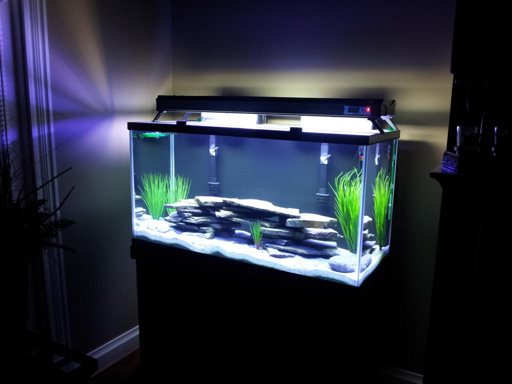100 Gallon Bow Front Aquarium