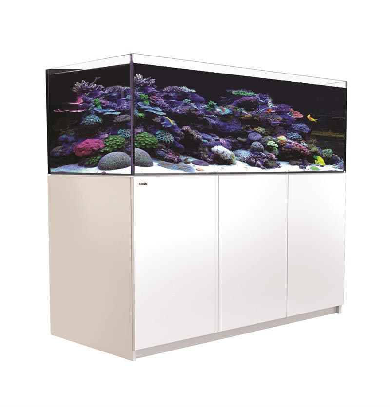 100 Gallon Glass Aquarium