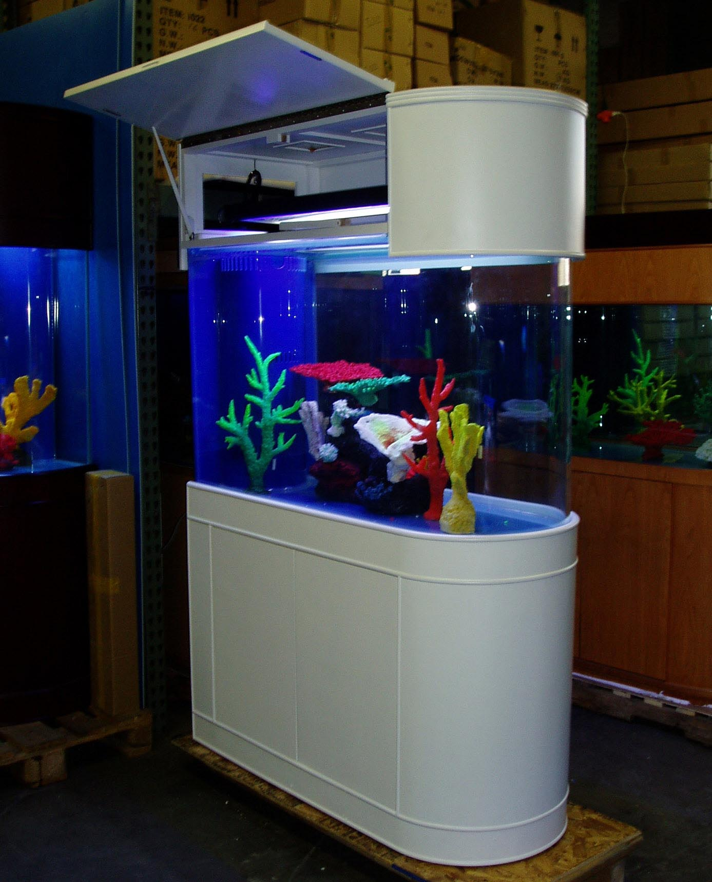 100 Gallon Glass Aquariums
