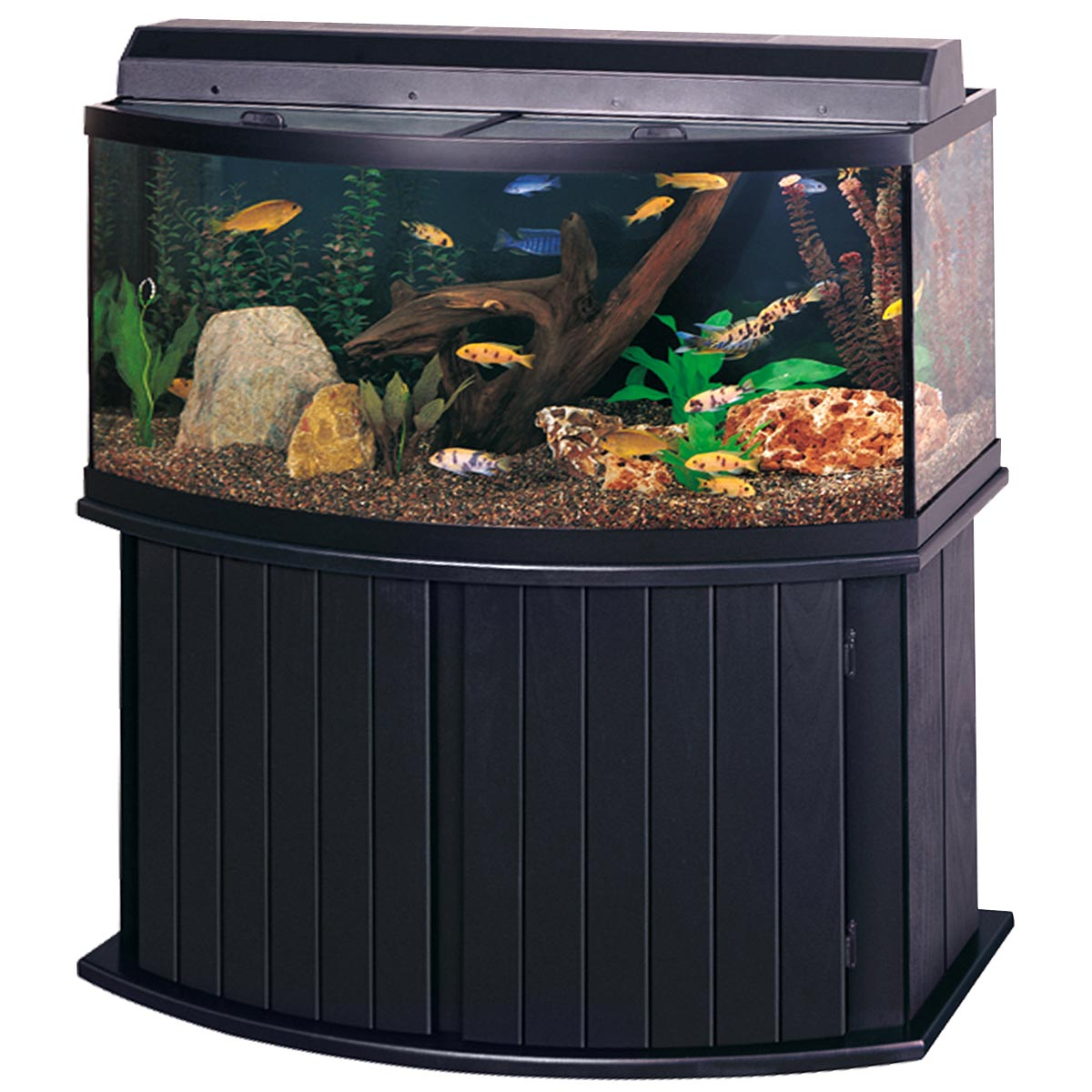 100 Gallon Glass Bow Front Aquarium