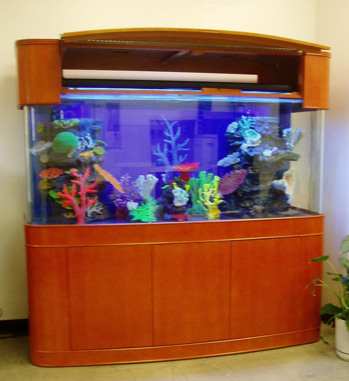 120 gallon glass aquarium aquarium design ideas