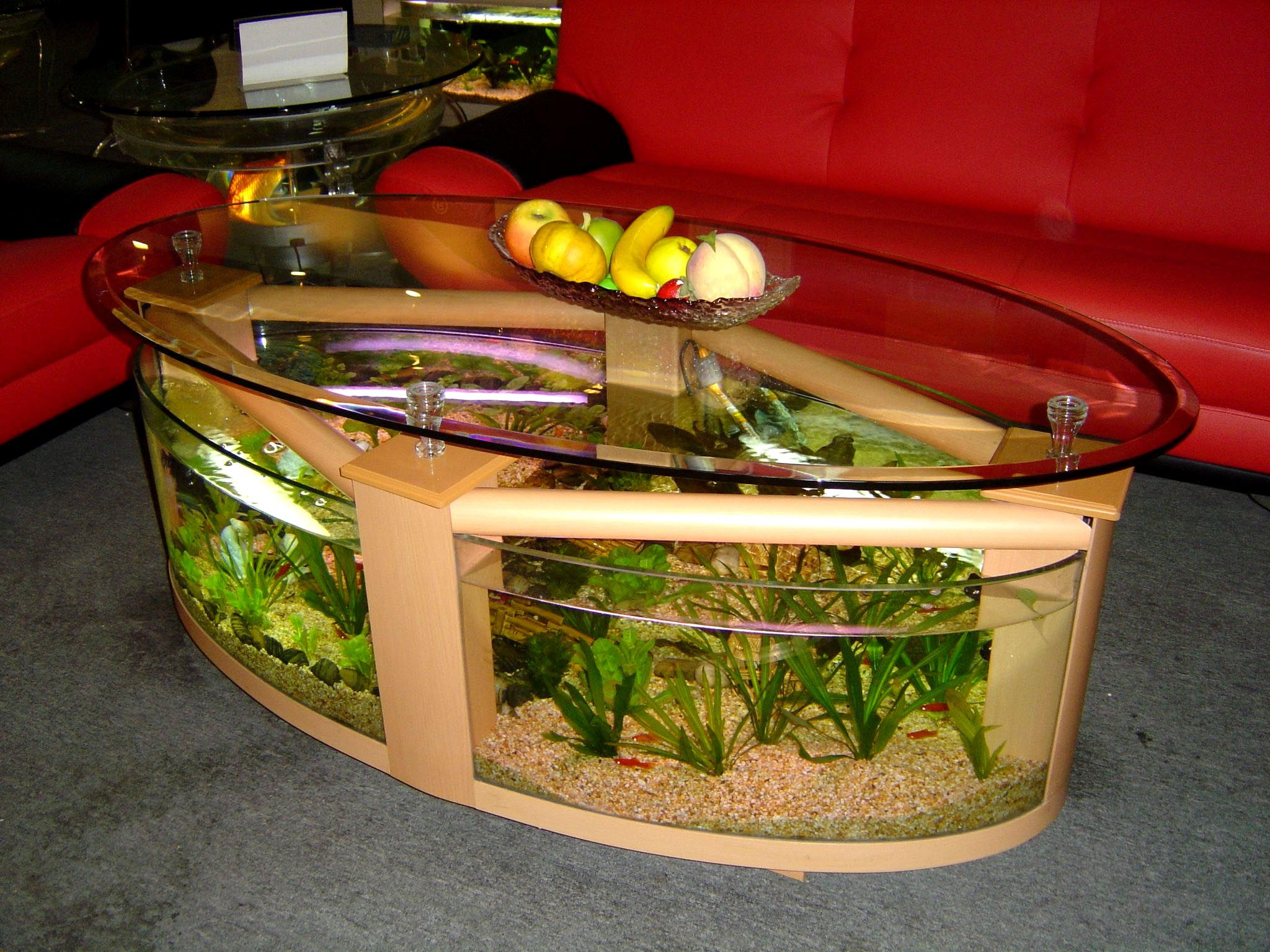 Aquarium Coffee Table Source How To Make An Aquarium Coffee Table