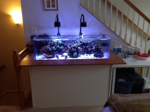 30 Gallon Acrylic Aquarium