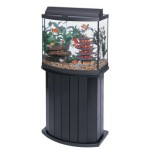30 Gallon Aquarium and Stand