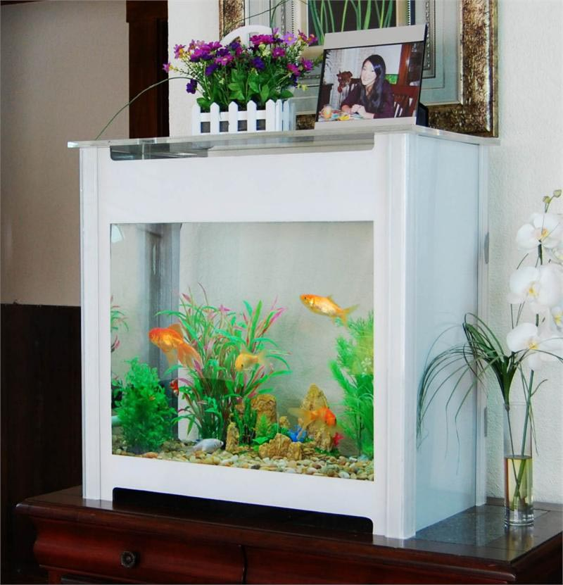 30 Gallon Aquarium Kit
