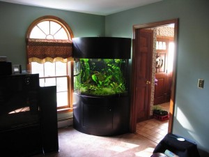 30 Gallon Bow Front Aquarium Dimensions