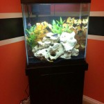 30 Gallon Fish Aquarium