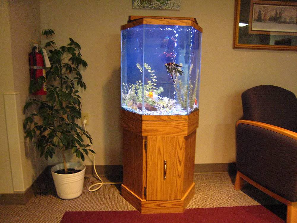 30 gallon hexagon aquarium hood aquarium design ideas