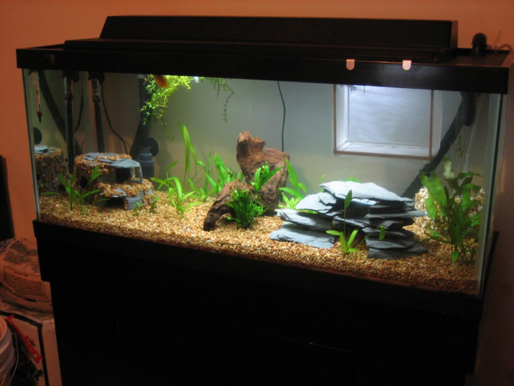30 Gallon Long Aquarium Dimensions
