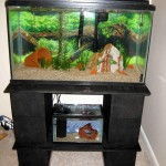 5 Gallon Fish Aquarium Stand