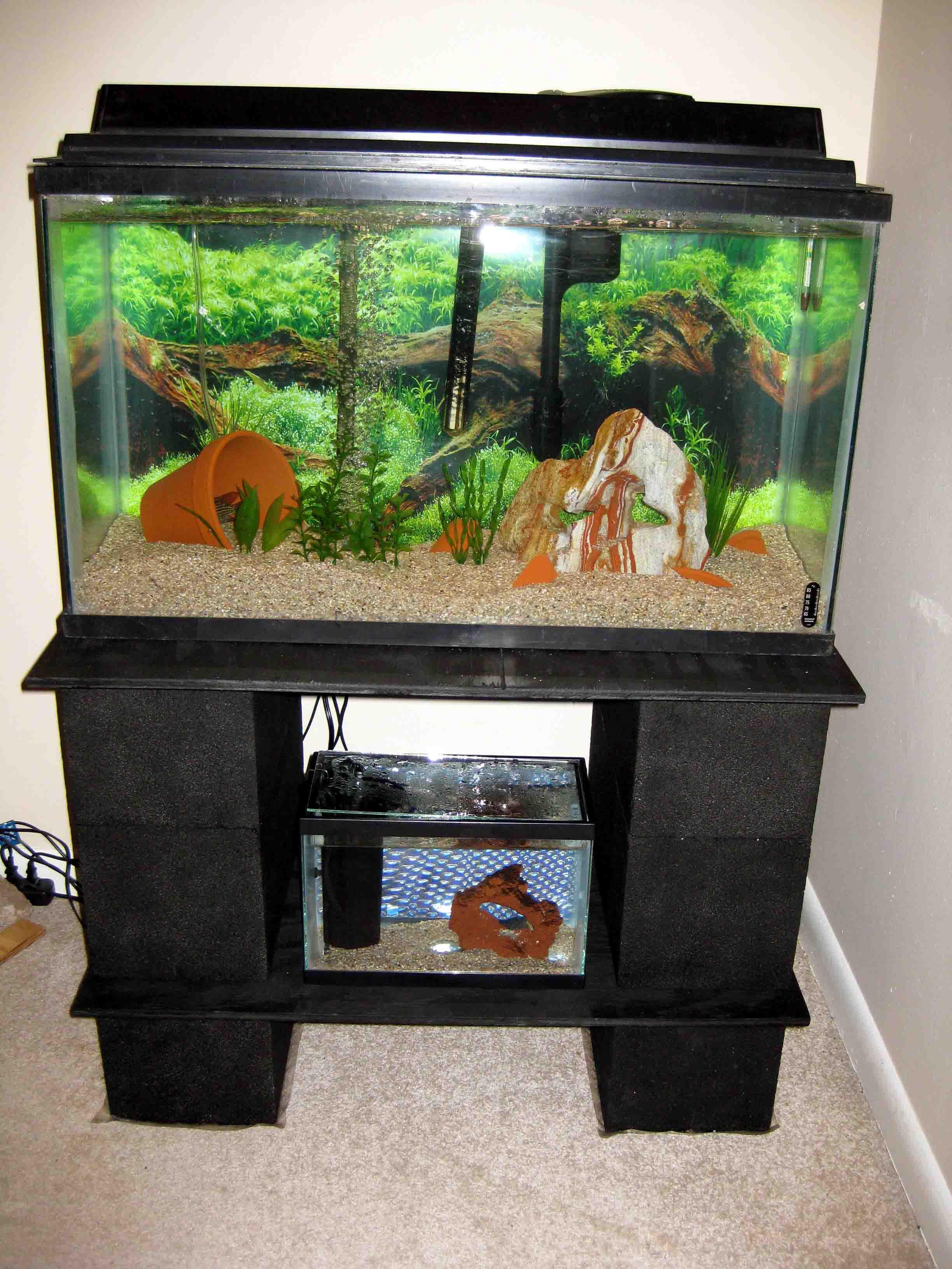 Fish tank tv stand - 5 Gallon Fish Aquarium Stand