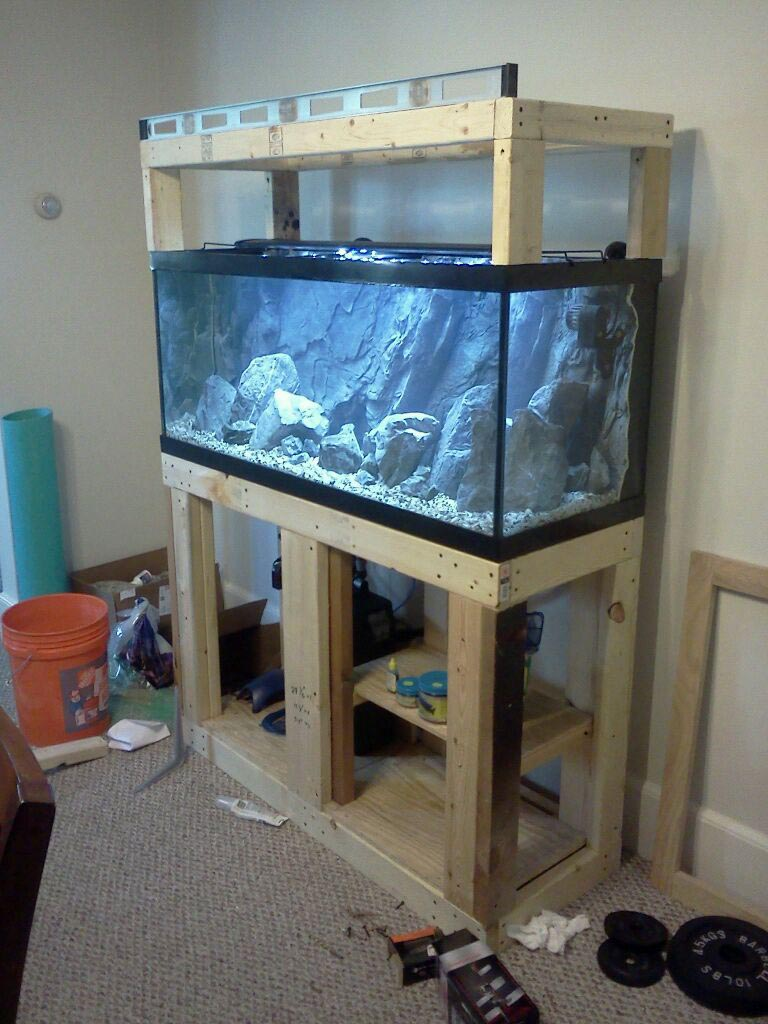 50 gallon fish aquarium stands aquarium design ideas for 50 gallon fish tank dimensions