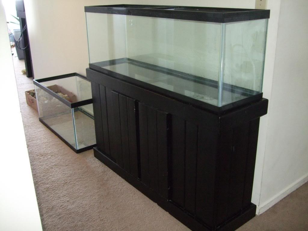 Aquarium stand 55 gallon 1000 aquarium ideas for 55 gal fish tank stand