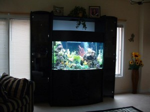 90 Gallon Fish Aquarium Stands