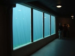 Acrylic Glass Sheets for Aquarium