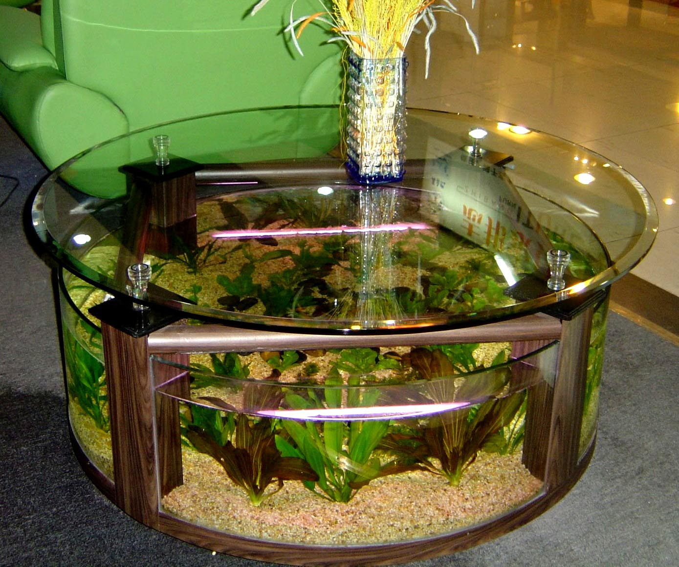 25 Gallon Aqua Coffee Table.Aqua Coffee Table 28 Gallon Aquarium Aquarium Design Ideas