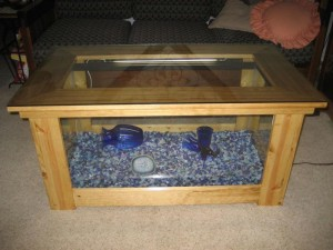 Aqua Octagon Coffee Table Aquarium