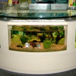 Aqua Vim Coffee Table Aquarium
