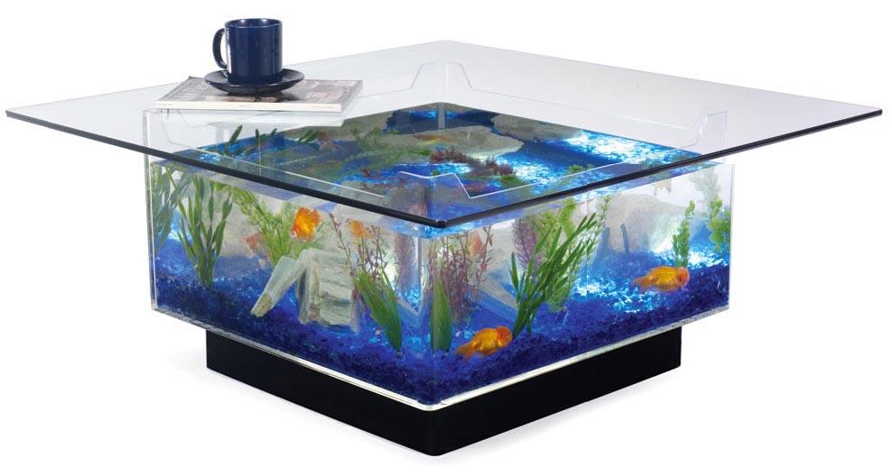 Aquarium Coffee Table Plans Aquarium Design Ideas