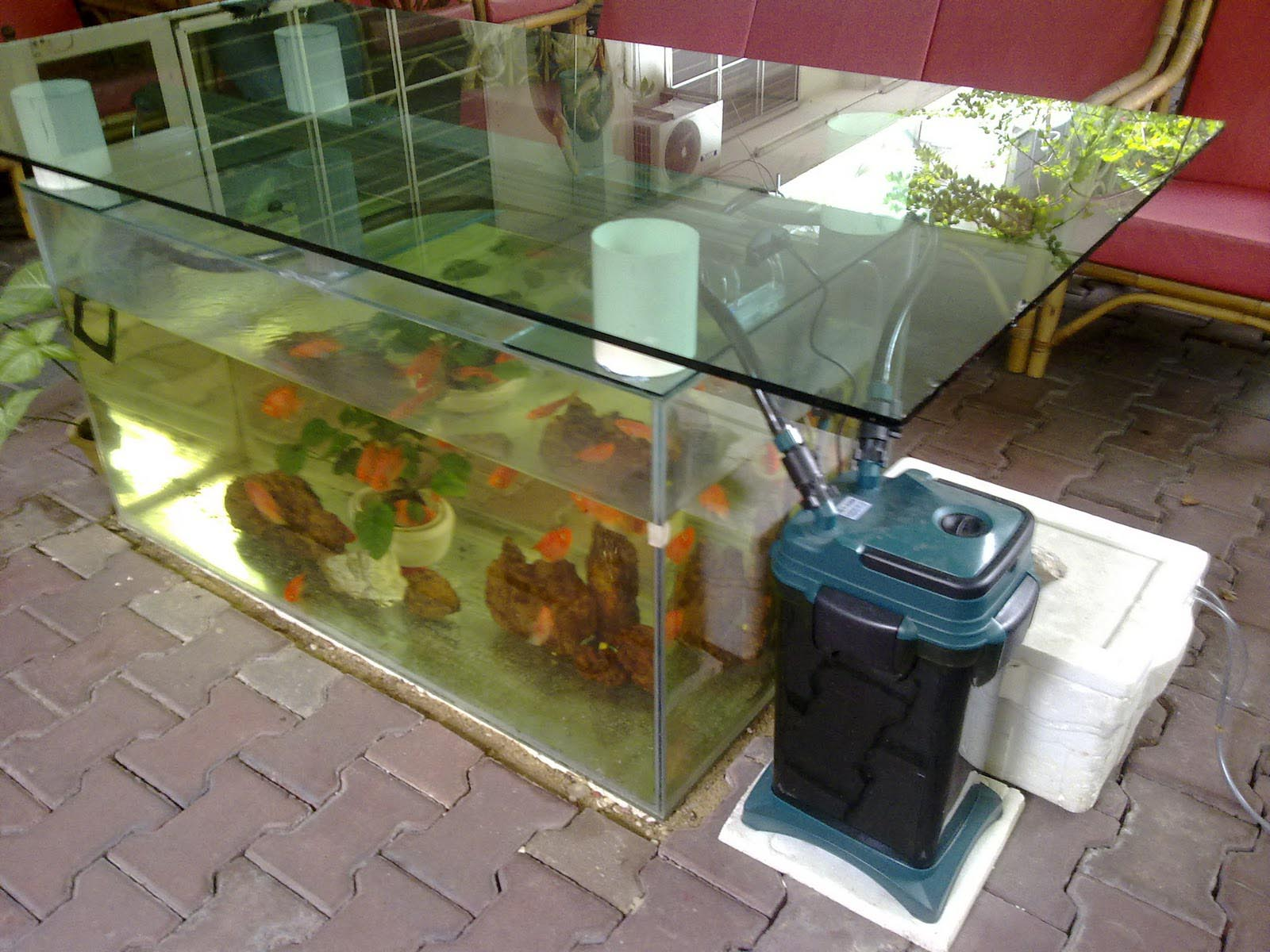 Ð¡ustom Shapes and Frames for Aquarium Coffee Table