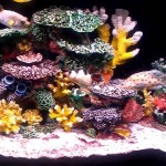 Aquarium Coral Reef Decor