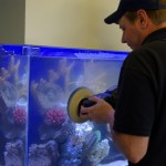Aquarium Glass Scratch Repair