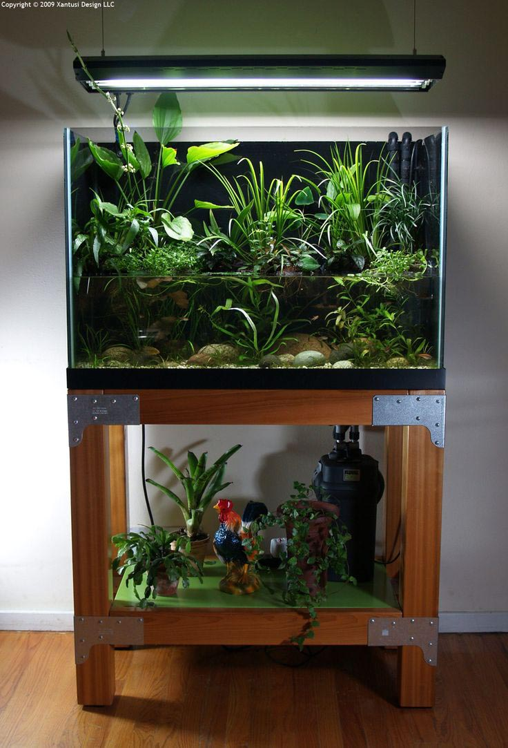 Aquarium Inspiration 70 Pictures of Decorative Fish Tanks