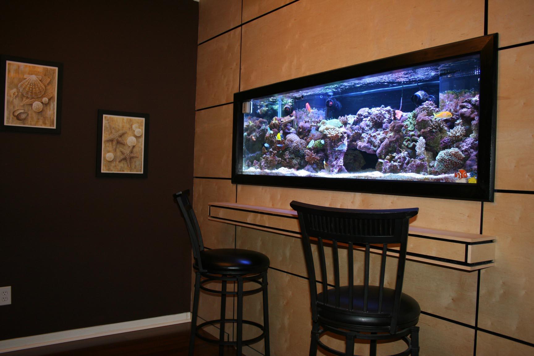 Aquarium design ideas best aquarium ideas for Fish tank wall