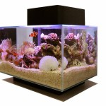 Aquarium Water Conditioning Salts