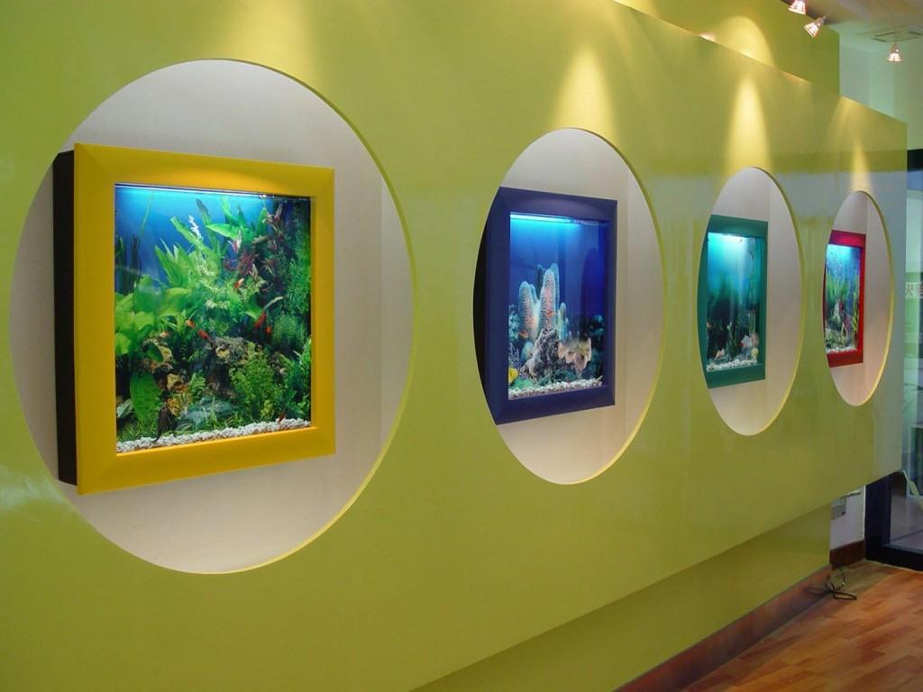 Aquavista 500 Wall Mounted Aquarium Reviews