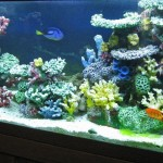 Artificial Aquarium Coral Reef