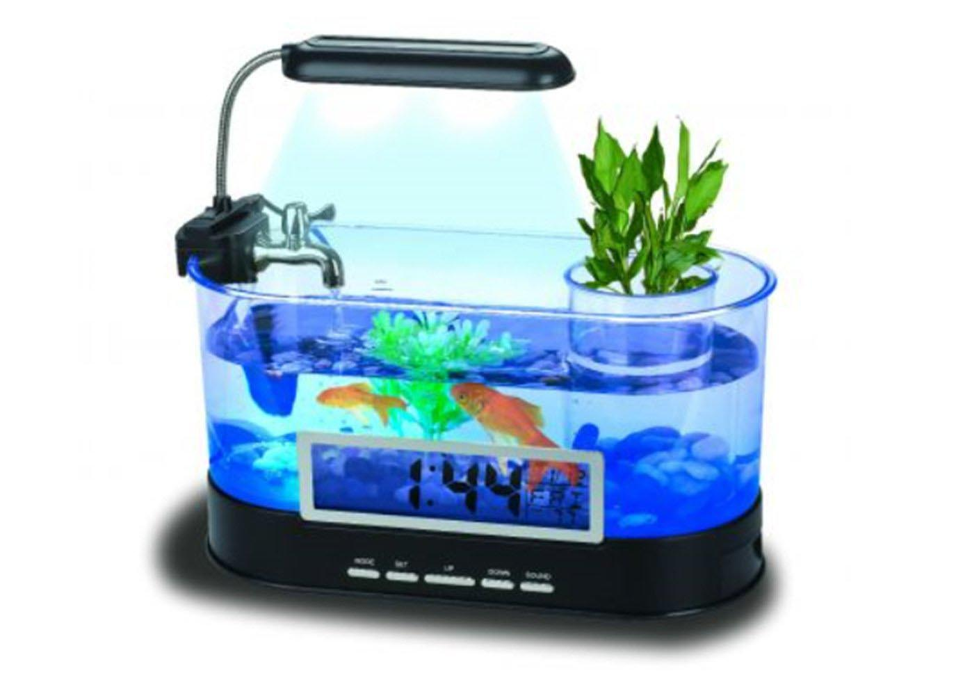 Amazing small aquarium design ideas photos best for Small fish tank