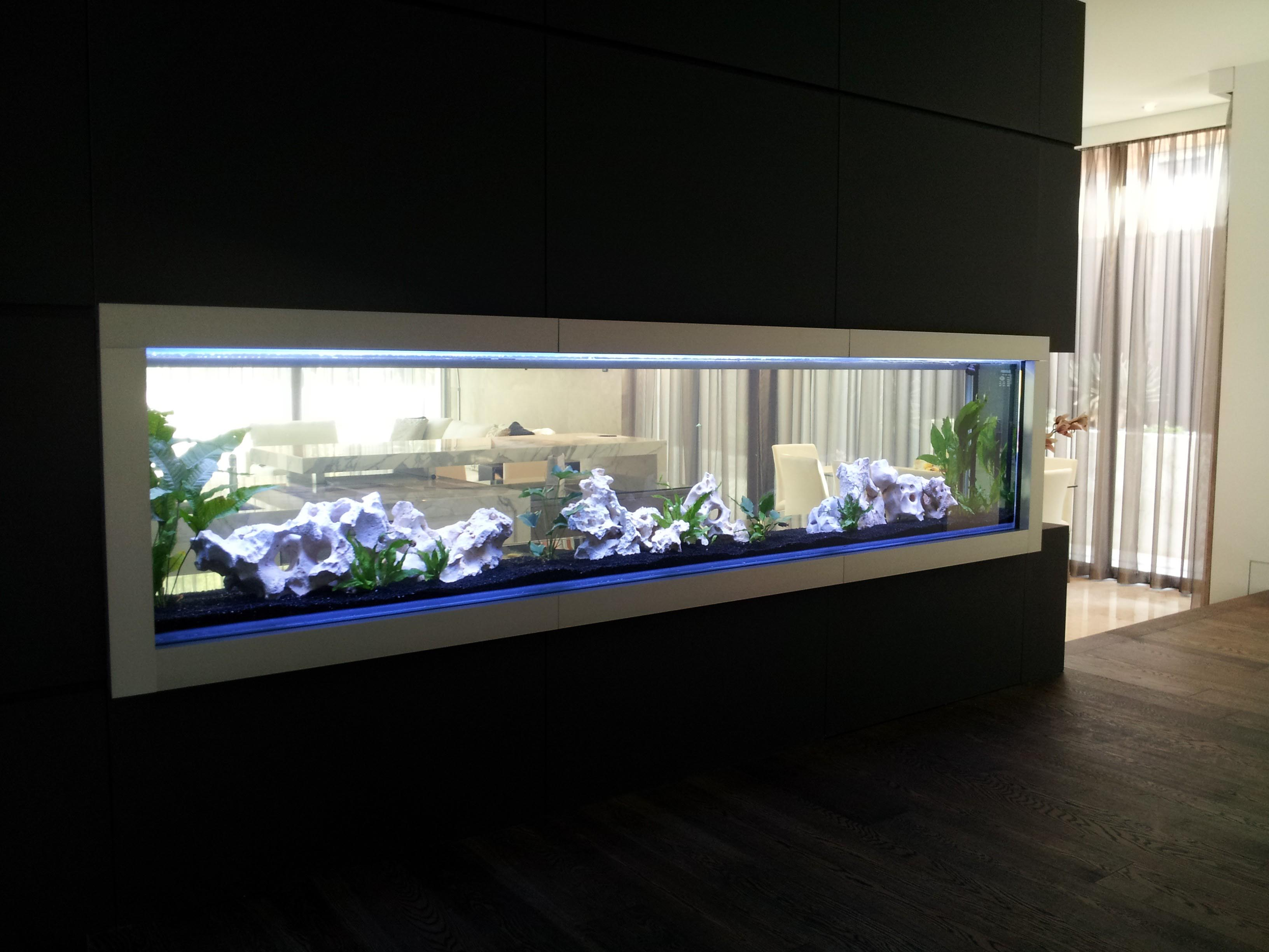 Best Glass Aquarium Manufacturers
