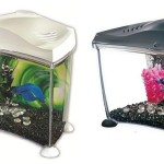 Betta Fish Aquarium Kit