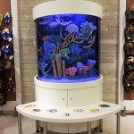 Bottled Ocean S Custom Aquarium Stands