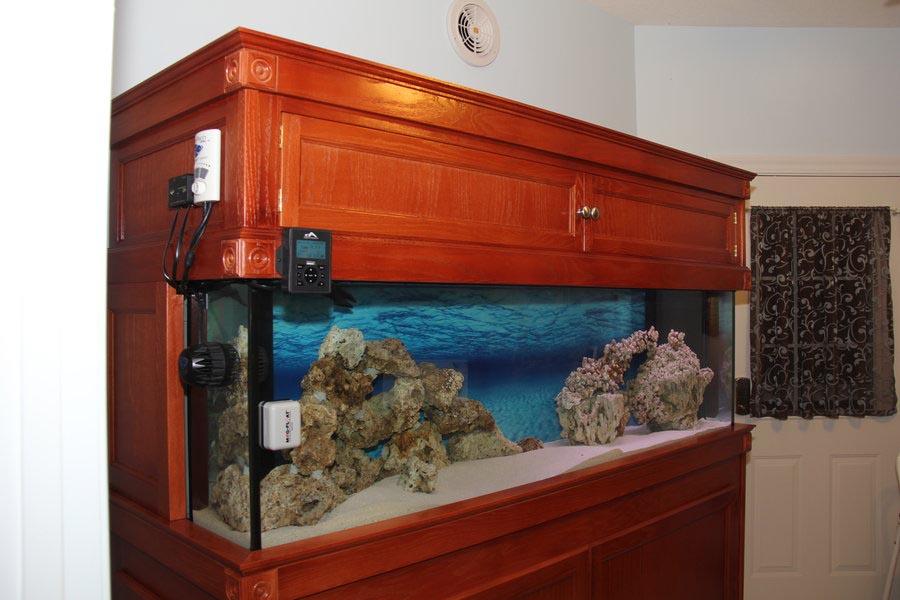 Build Custom Aquarium Stand