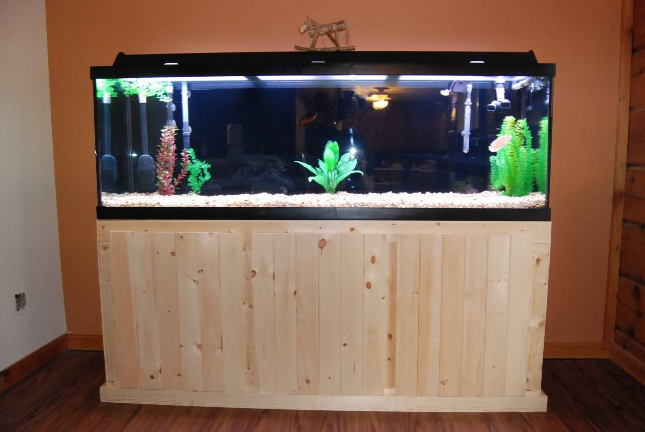 Building a custom aquarium stand aquarium design ideas for Make your own fish tank