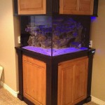 Building Custom Aquarium Stand