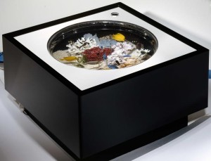 Circle Coffee Table Aquarium