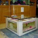 Coffee Table Fish Aquariums