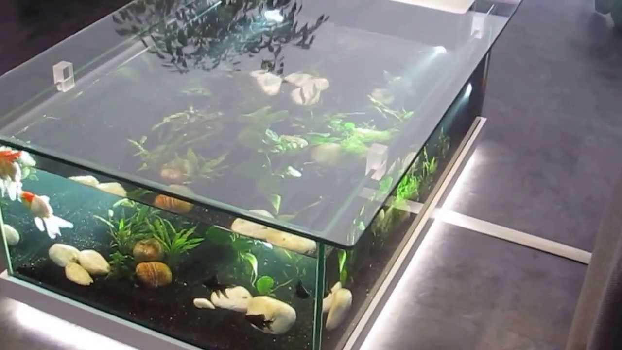 Coffee table with aquarium aquarium design ideas - Table basse aquarium design ...