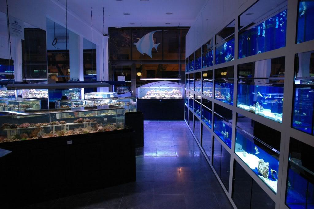 Coral Reef Aquarium Supply