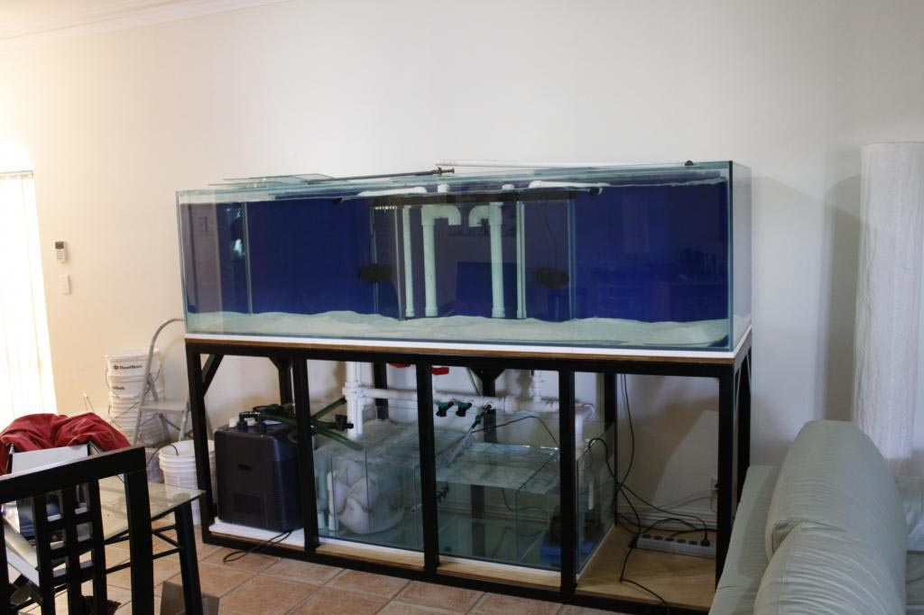 Custom Aquarium Metal Stands