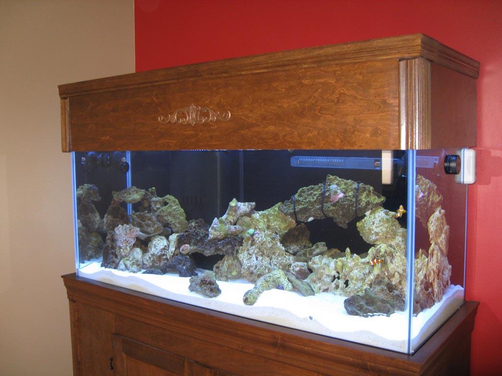 Custom Aquarium Stand Canopy