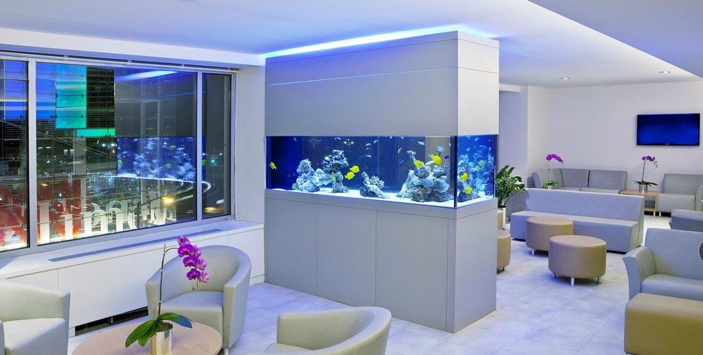 Custom Aquarium Stand Plans